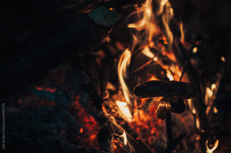 Roasting Sausage by L&S Studios for Stocksy United