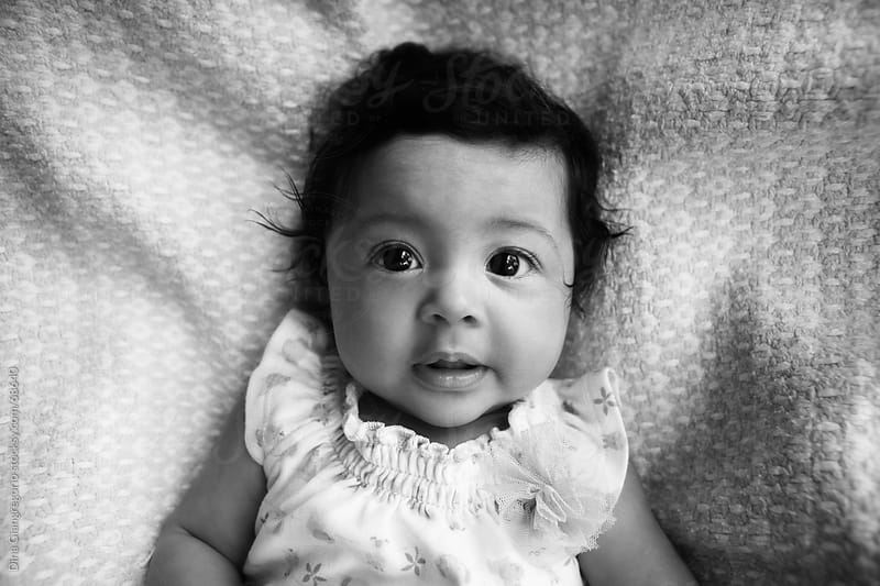 Hispanic  / multiethnic baby with a lot of hair looking at camera with soft smile by Dina Giangregorio for Stocksy United