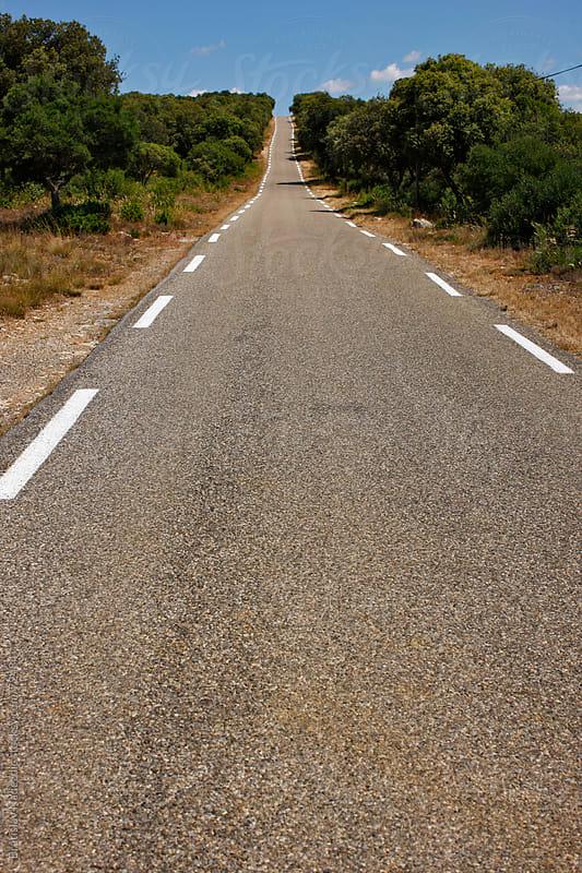 Road in France by Bratislav Nadezdic for Stocksy United