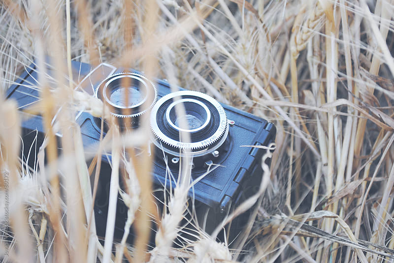 old camera in wheat by Jovana Vukotic for Stocksy United