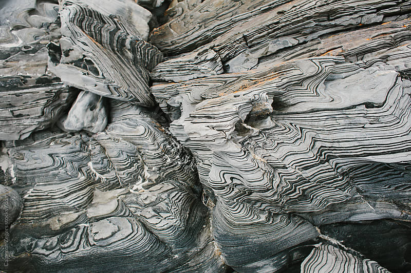 Zebra Schist by Cameron Zegers for Stocksy United