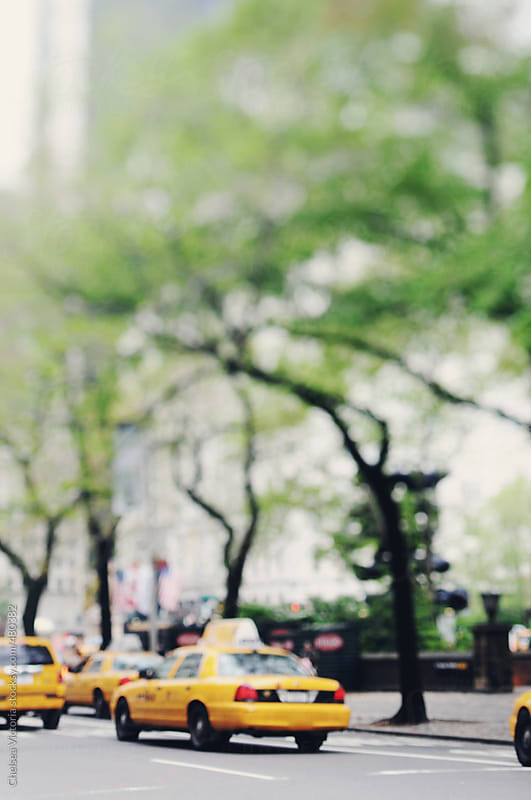 Out of focus taxis drive past central park in the springtime by Chelsea Victoria for Stocksy United