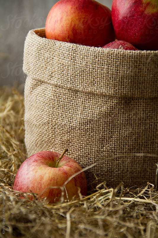 Apples in a sack by Kirsty Begg for Stocksy United