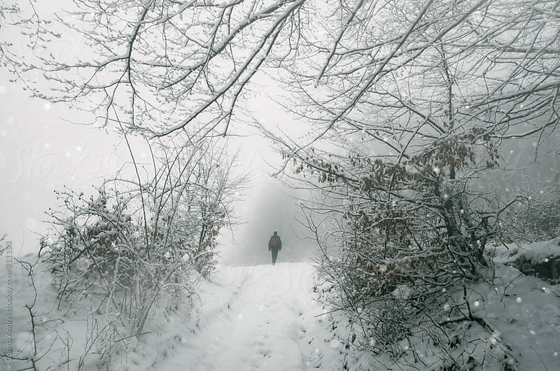 Man walking in winter forest with fog by Cosma Andrei for Stocksy United