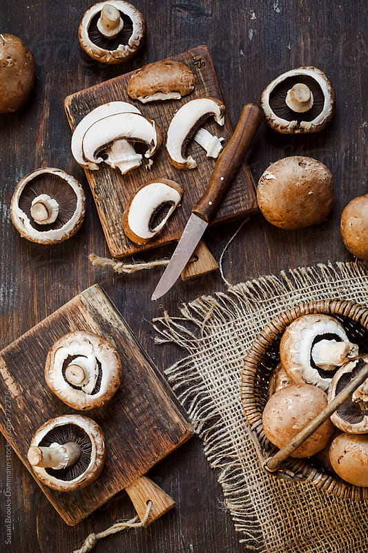 Mushrooms by Susan Brooks-Dammann for Stocksy United