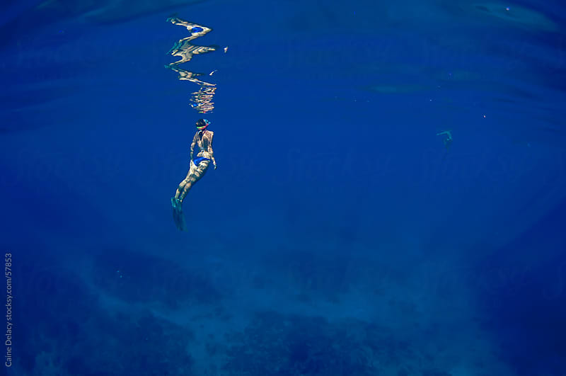 Free diving in calm blue ocean by Caine Delacy for Stocksy United