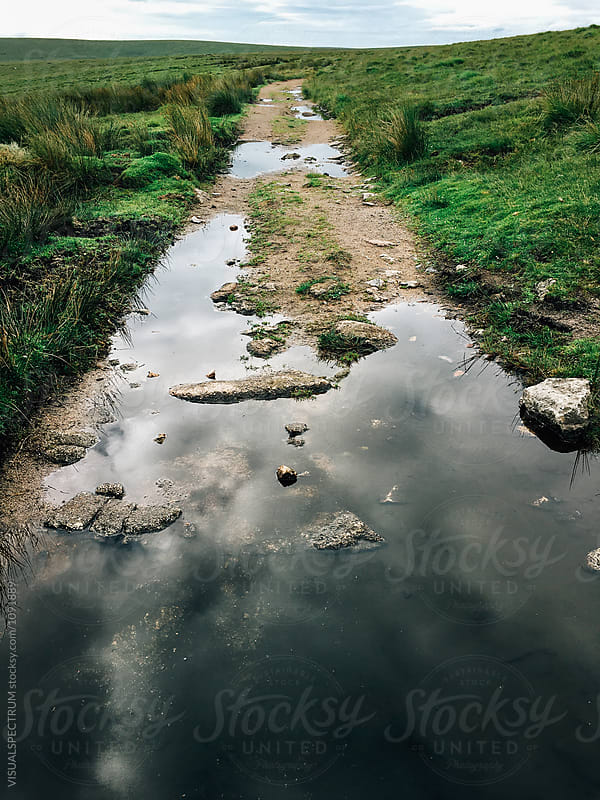 Clouds Reflected in Rain Water Puddles on Countyside Path by Julien L. Balmer for Stocksy United