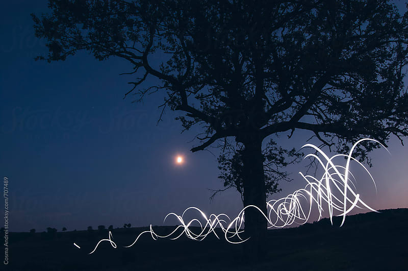 Light painting at night with tree and moon by Cosma Andrei for Stocksy United