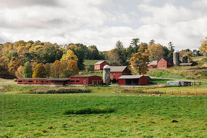 Farm in Berkshires Massachusetts by Raymond Forbes LLC for Stocksy United