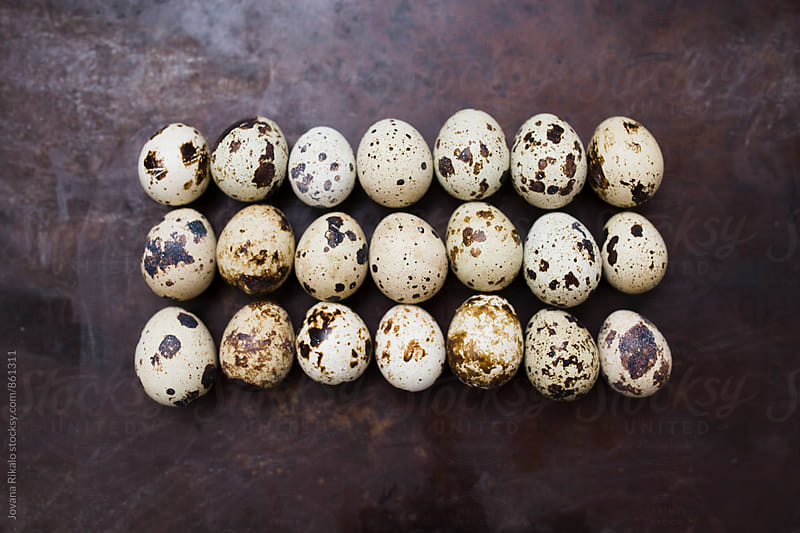 Quail eggs on a black background by Jovana Rikalo for Stocksy United