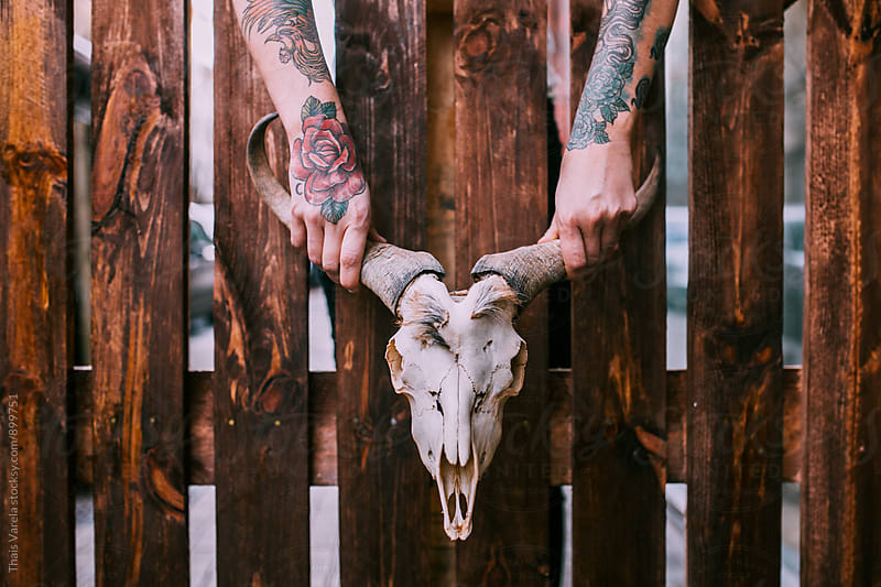 skull held by tattooed hands by Thais Ramos Varela for Stocksy United