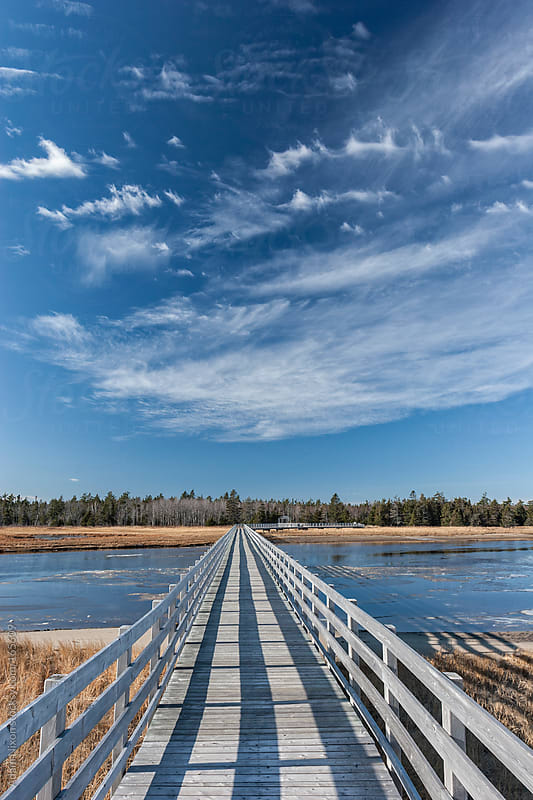 Wooden Boardwalk over a River by Adam Nixon for Stocksy United