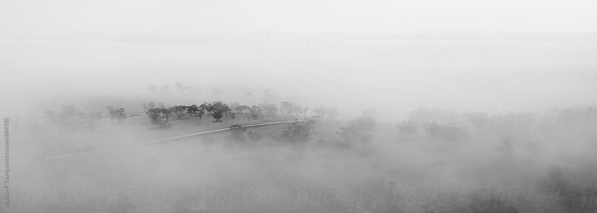 Top Of A Hill Peeking Through The Fog Panorama