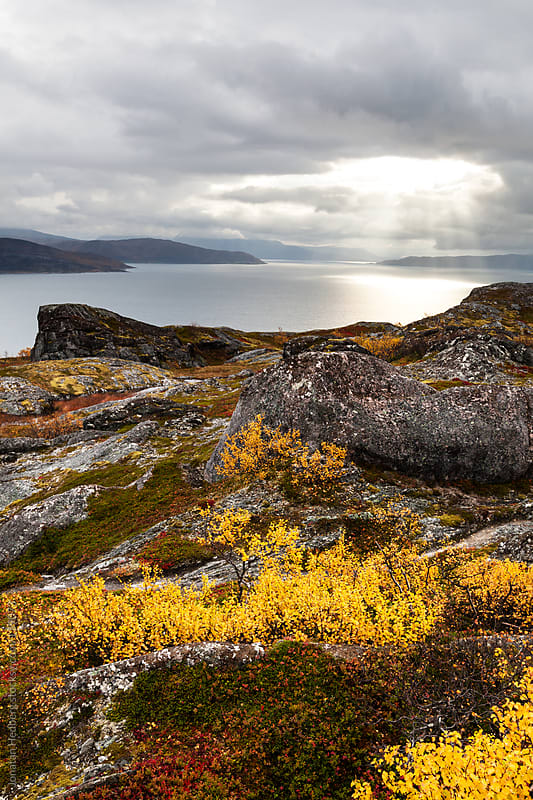 Rocks overlooking a fjord in northern Norway in the fall by Jonatan Hedberg for Stocksy United