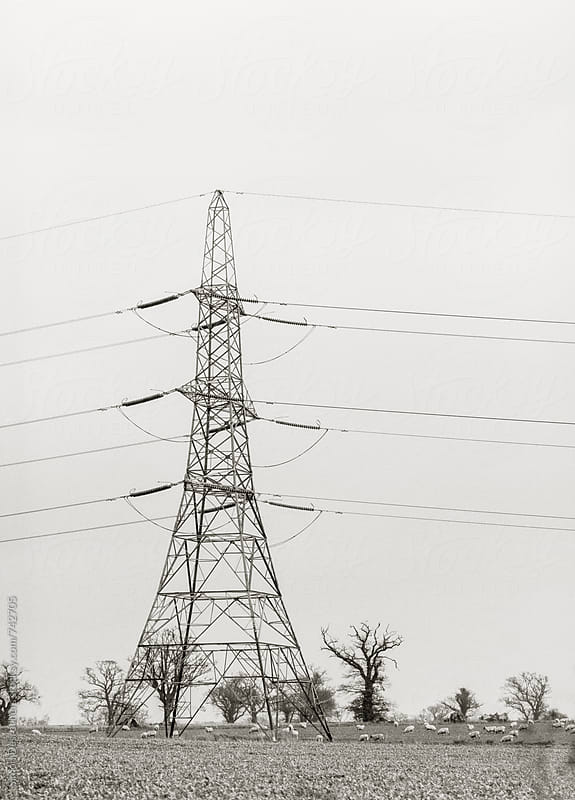 Transmission tower in Suffolk, UK. by Simonfocus for Stocksy United