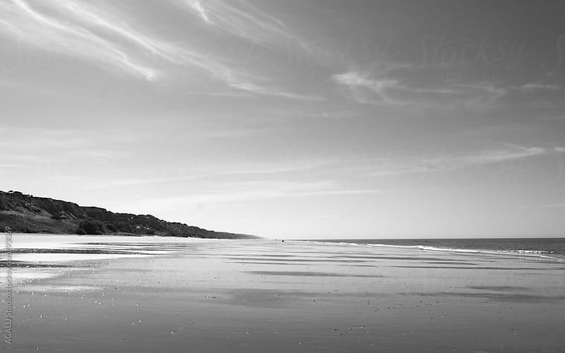Gray Doñana beach by ACALU Studio for Stocksy United