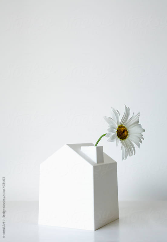 House and Daisy by Mental Art + Design for Stocksy United