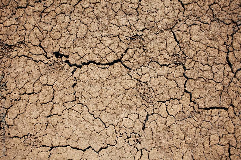 Background of dry earth. by Shikhar Bhattarai for Stocksy United