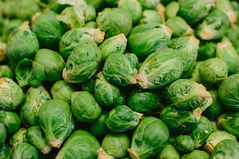 Brussel Sprouts by Melanie Riccardi for Stocksy United