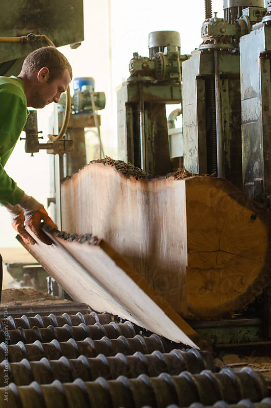 Wood processing in wood floor factory by Jelena Jojic Tomic for Stocksy United