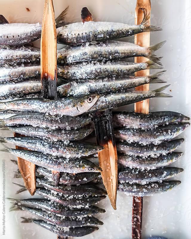 Typical spanish spit sardines by Marta Muñoz-Calero Calderon for Stocksy United