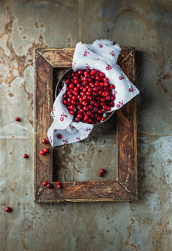 Frame with wild cranberries by Tatjana Zlatkovic for Stocksy United