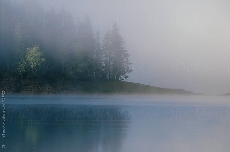 Fog above the lake in the morning by Dimitrije Tanaskovic for Stocksy United