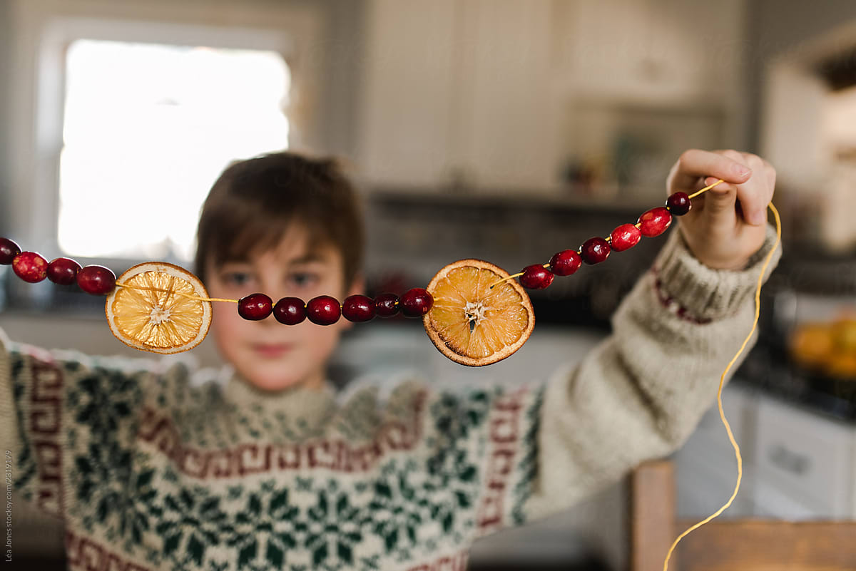 Stock Photo Boy Showing A Christmas Garland With Cranberries And Dried Oranges