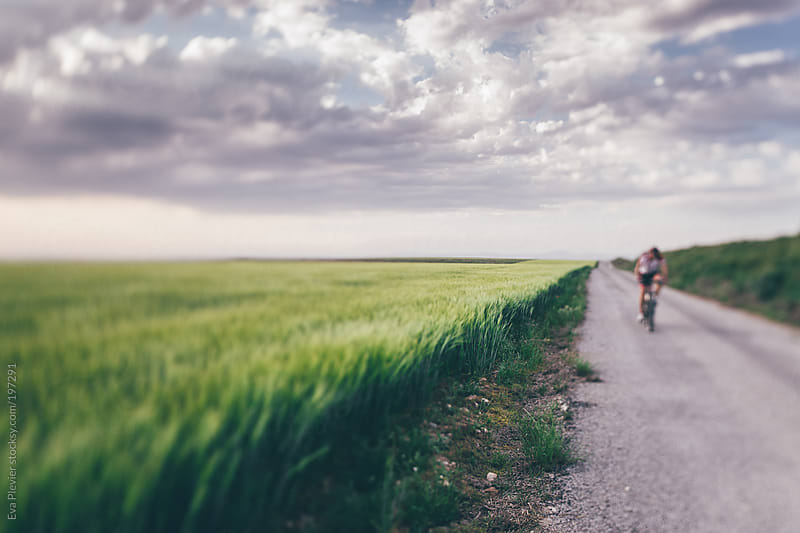 Cyclist on a road trough a field. by Eva Plevier for Stocksy United