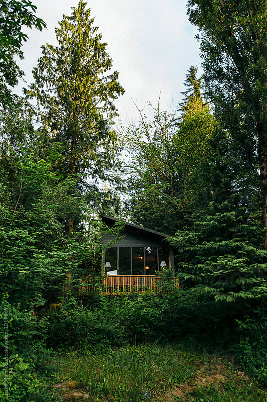 Forest Cabin Hidden In The Trees by Luke Mattson for Stocksy United