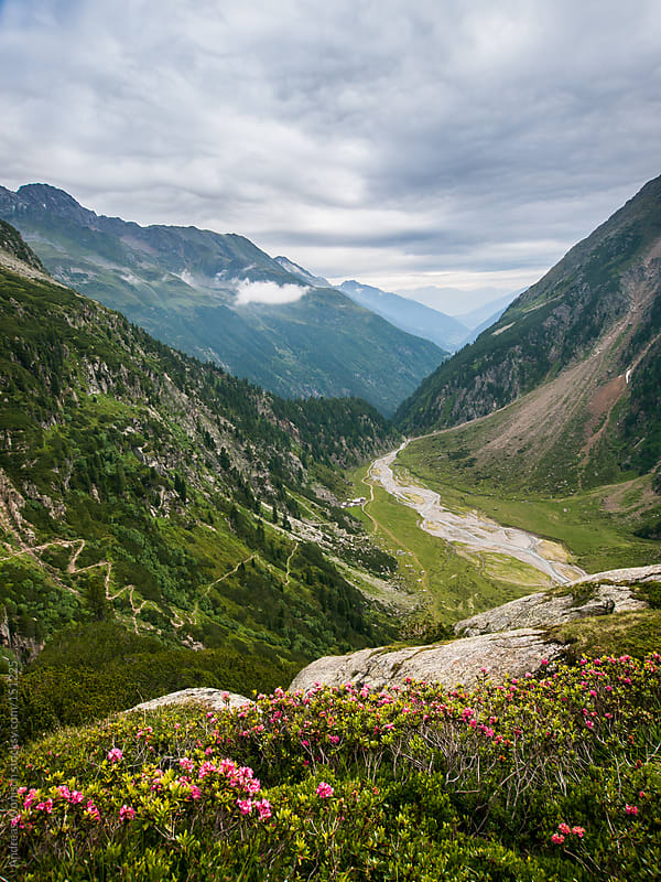 View over the Austrian Alps in the Stubaital by Andreas Wonisch for Stocksy United