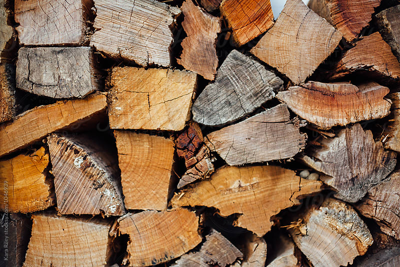 Pile of Cut Wooden Logs by Kara Riley for Stocksy United