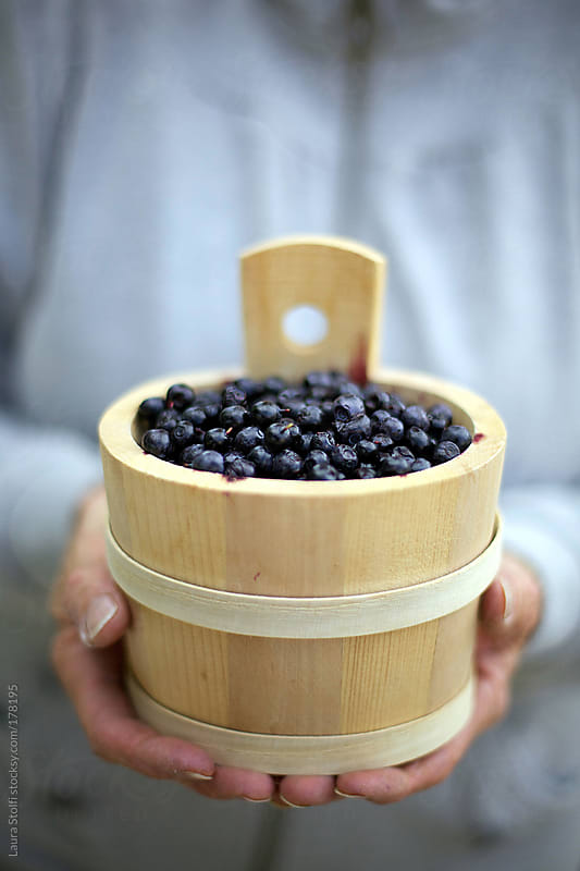 Mountain blueberries in wooden tub in woman's hands by Laura Stolfi for Stocksy United