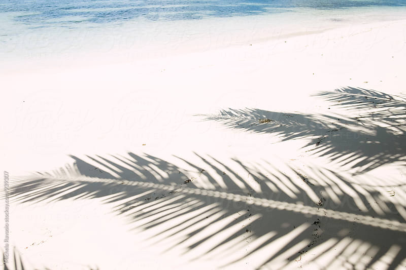 Shadow of palm leaves on the white sand of a tropical beach by michela ravasio for Stocksy United