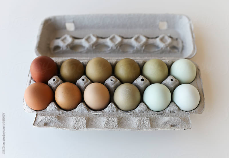 Multi-Coloured Eggs from Heritage Hens by Jill Chen for Stocksy United