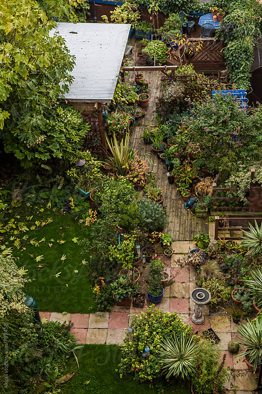 Birds eye view of a garden by kkgas for Stocksy United