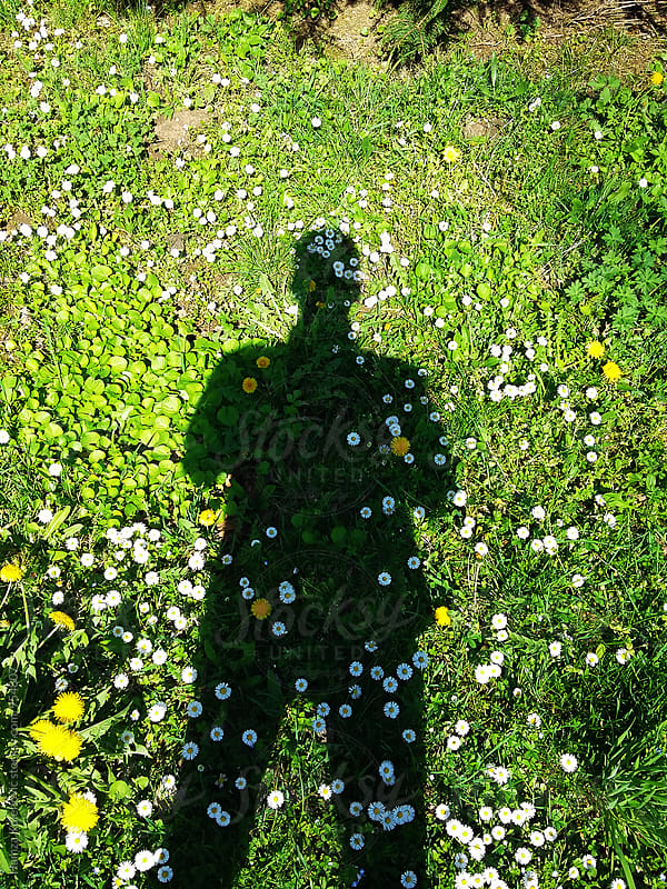Shadow of a young man over the green grass and flowers by Hamza Kulenović for Stocksy United