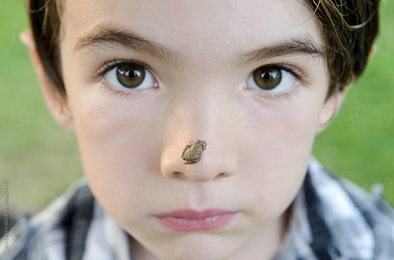 Boy has a tiny tree frog on his nose by Cara Slifka for Stocksy United