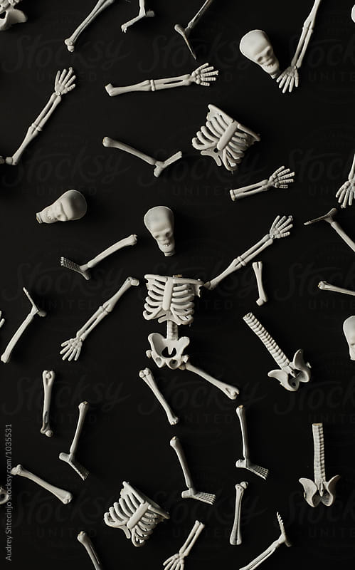 Human skeleton miniature/halloween. by Marko Milanovic for Stocksy United