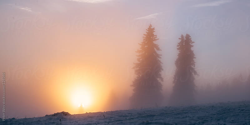 Winter sunset  by Peter Wey for Stocksy United