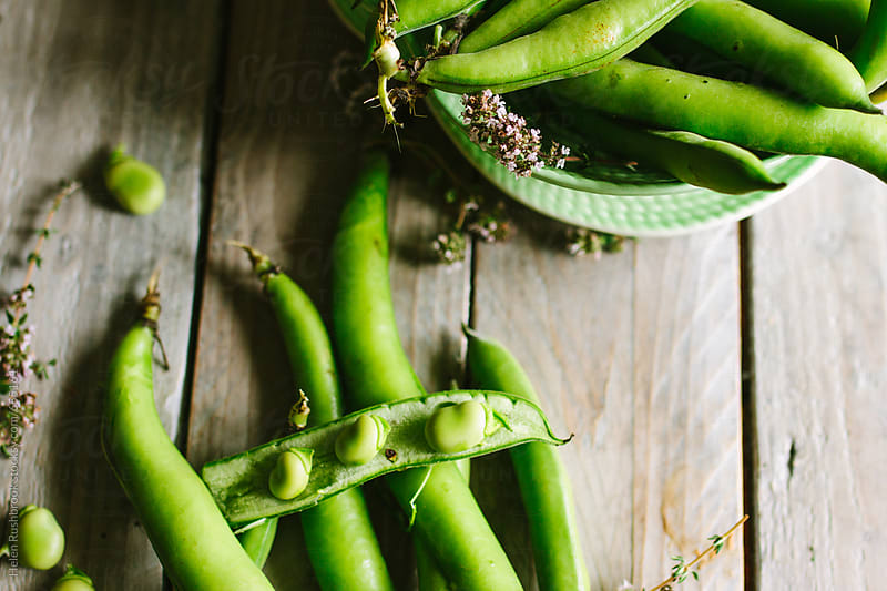 Broad beans and thyme by Helen Rushbrook for Stocksy United