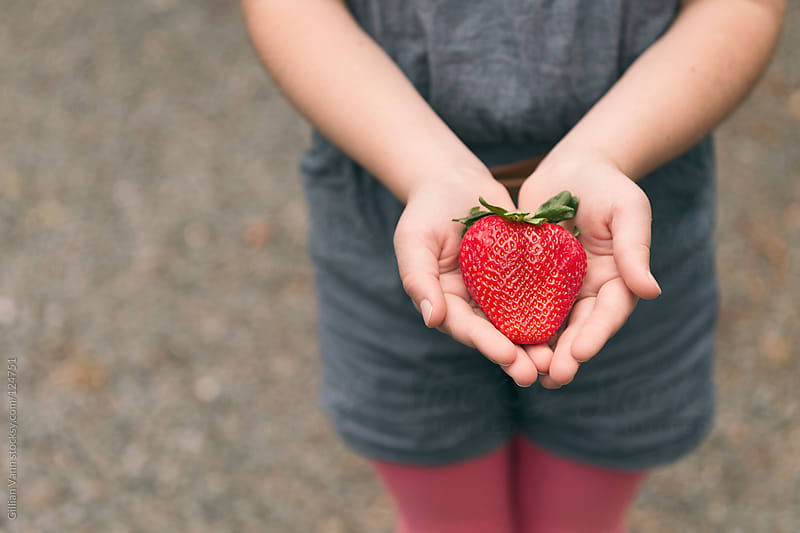 extra large strawberry by Gillian Vann for Stocksy United