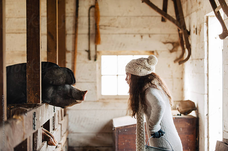 Farm by Melanie DeFazio for Stocksy United