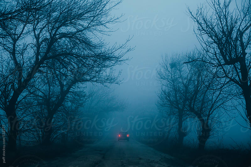 A car on a misty road by paff for Stocksy United