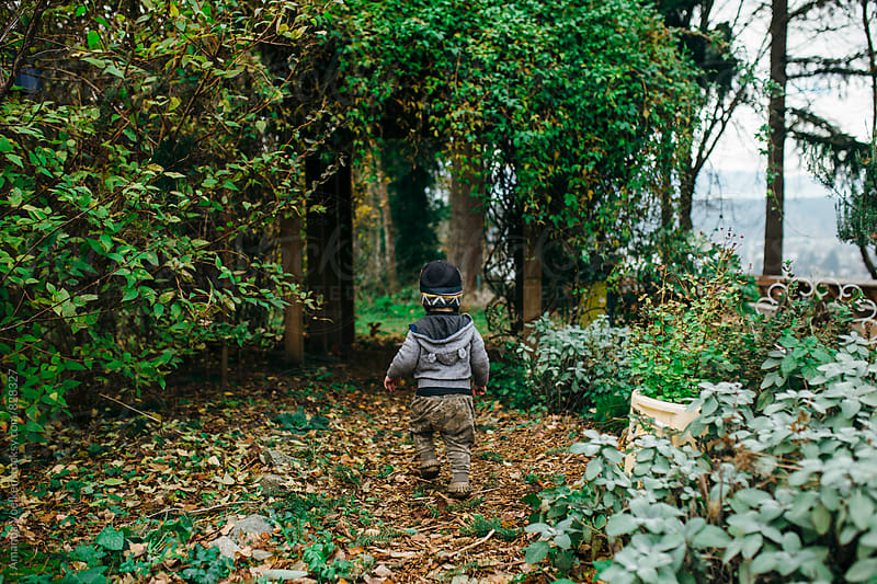 Back View of a Toddler Walking Toward a Lush Trellis by Amanda Voelker for Stocksy United