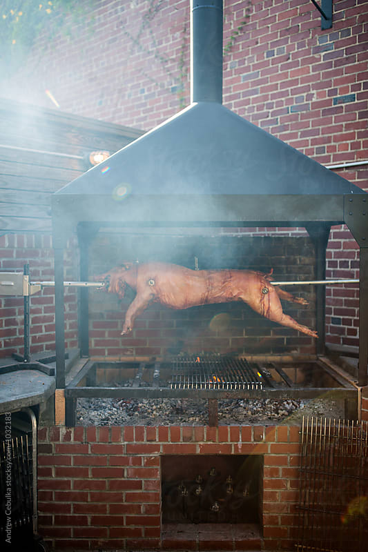 Fire roasted whole hog cooking on spit by Andrew Cebulka for Stocksy United