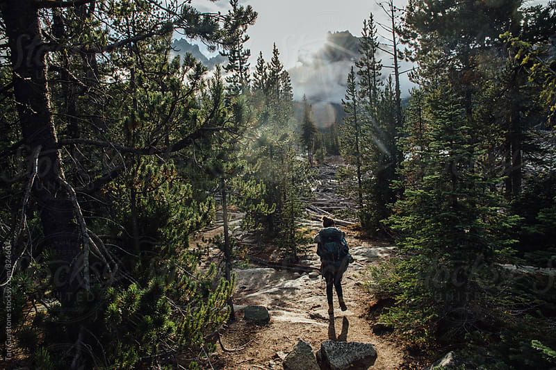 Backpacker hiking on trail through forest by Tari Gunstone for Stocksy United