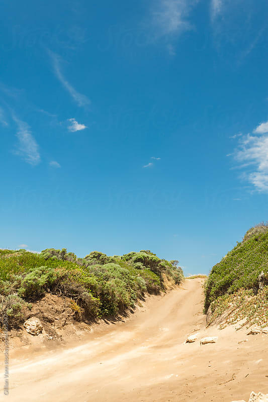 4x4 off road track by the coast by Gillian Vann for Stocksy United