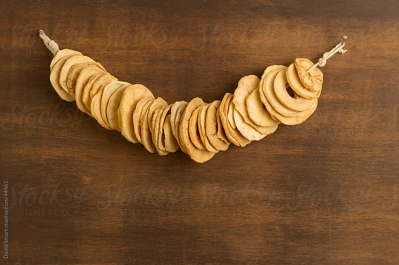 Dried apple slices hanging from a string by David Smart for Stocksy United