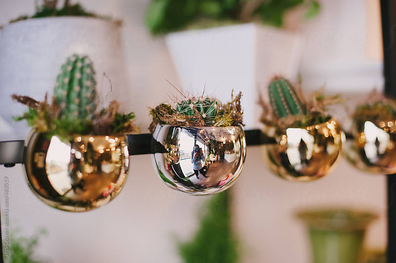 Reflection of girl taking picture in shiny gold cactus plant pot by Daring Wanderer for Stocksy United